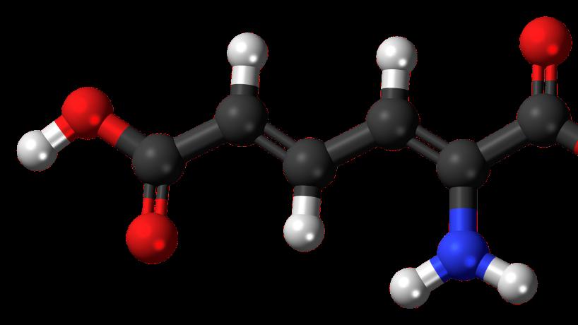 Bild von WikimediaImages auf Pixabay